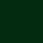 Zinkel® 6005