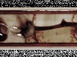 Бордюр 10CR1115TG0160015