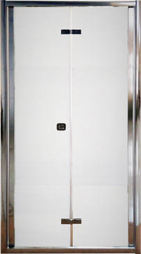 Стеклянная дверь ALT-D81